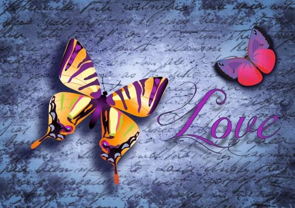 butterfly-888503_1280