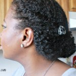 flat twists with roll protective style wash and go