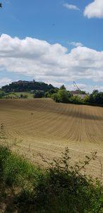 Lauzerte fields