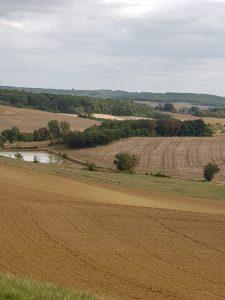fields on Gr65 to Miradoux