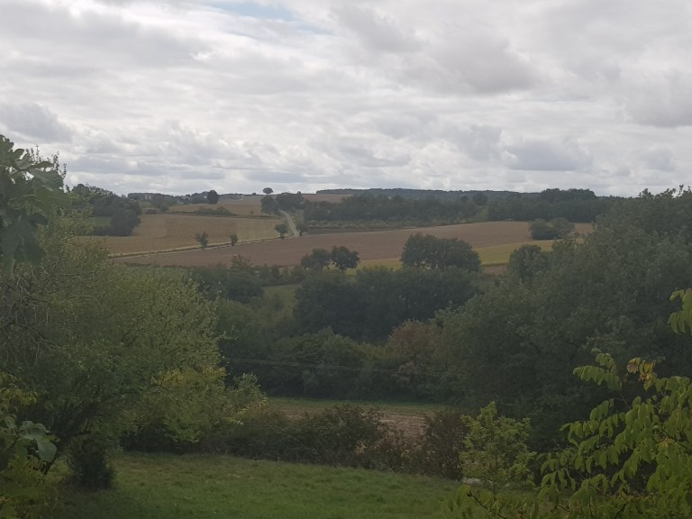 fields out of Lectoure
