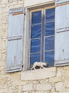 more cats in La Romieu