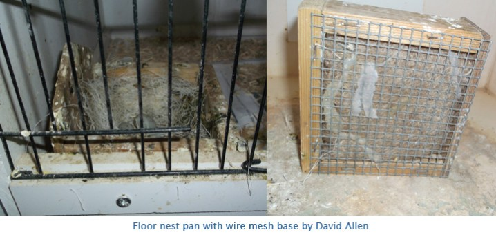 Floor nest pan- DAllen