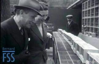 Paris bird market 1954?-fss