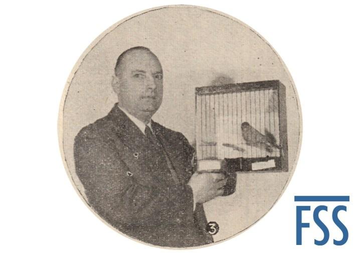 Alf Barnes Cinnamon Norwich canary