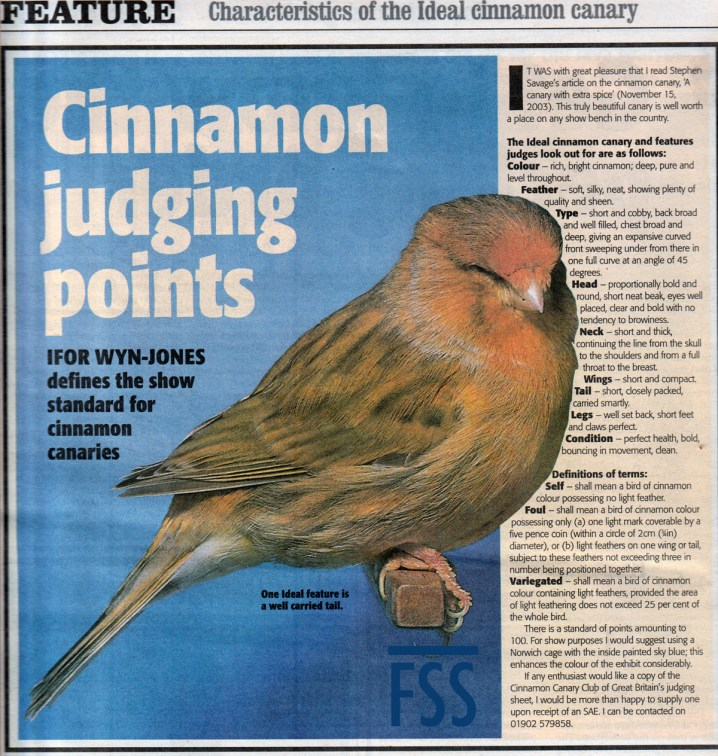 Cinnamon canary standard