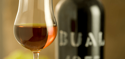 Madeira Wine Glass