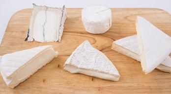 Bloomy cheese