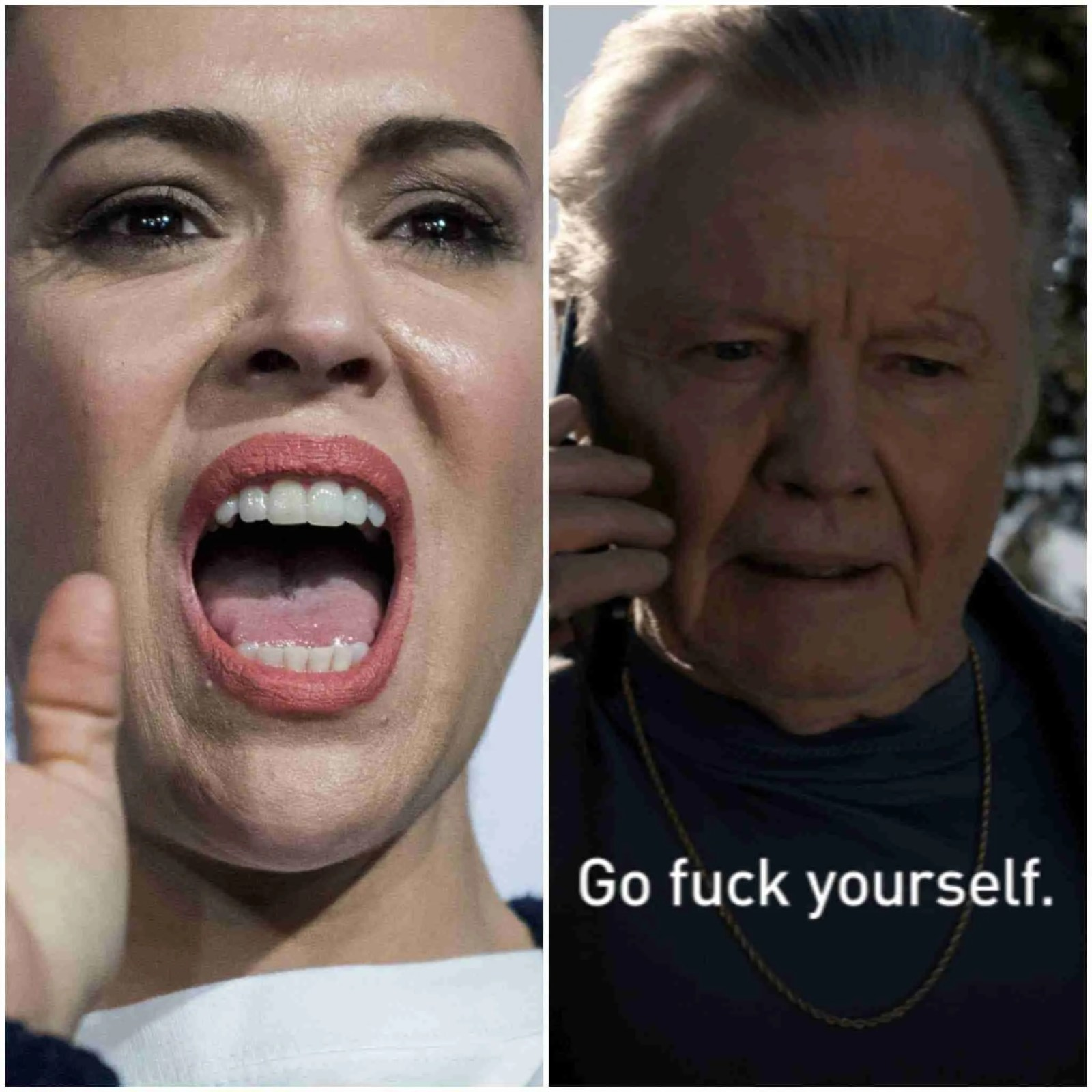 Alyssa Milano Rips Jon Voight for supporting Trump & Goes off on Twitter 7