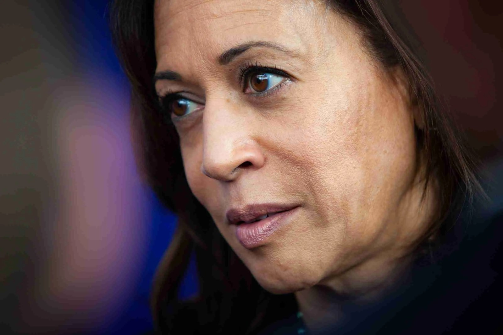 Kamala Harris calls for Inspector General to Investigate Whether Trump Improperly ordered Investigations 7