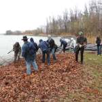 Students from the College at Brockport helping to remove invasives from Hamlin Beach State Park. Photo credit: Hilary Mosher