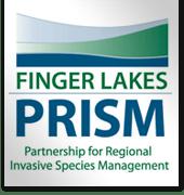 fl-prism-logo