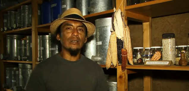 """Help FLPCI friends in Guatemala wage a """"Seed Revolution."""" (video)"""