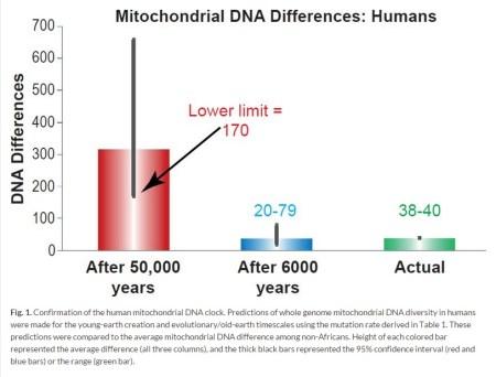 MtDNA 변이 차이 2015 인간