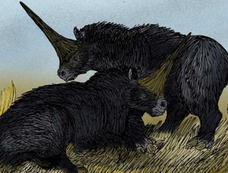 시베리아 유니콘이 화석으로 발견 - 성경의 오류