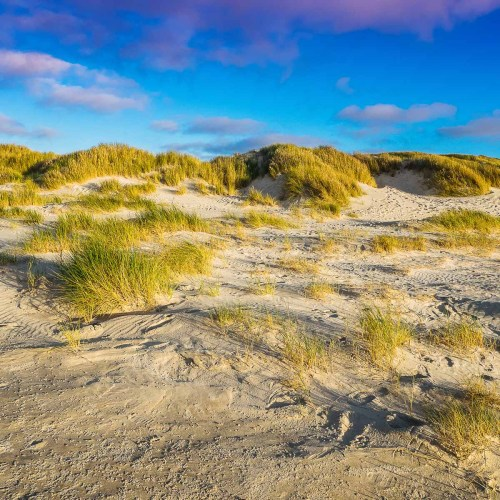 Sunset on the beach of vejers strand in danmark