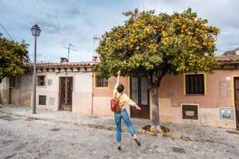 A girl is picking oranges from a tree in the streets of Mallorca