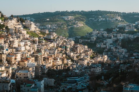 Sund and shade divide houses in a valley in Jerusalem