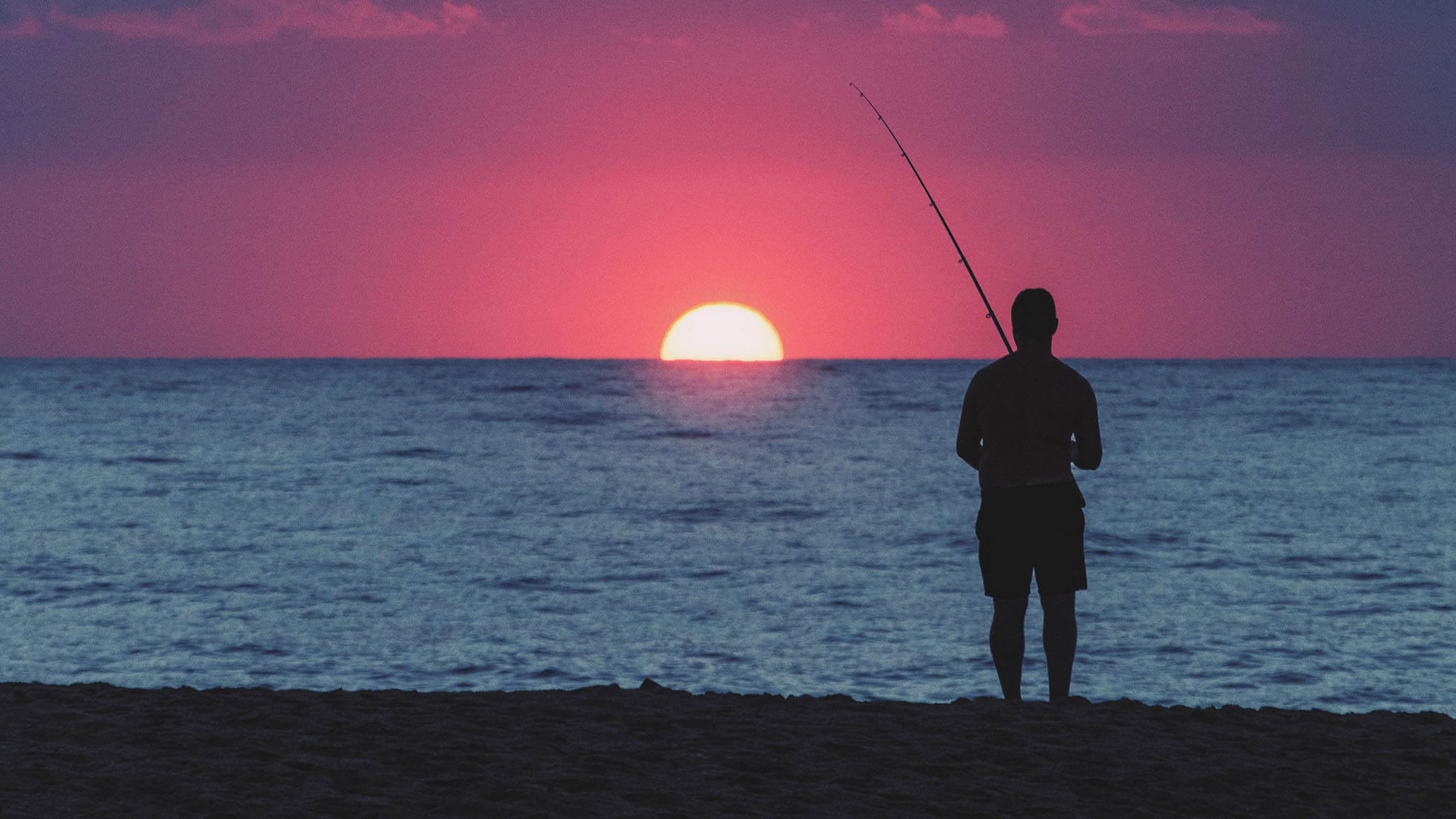 Fish Finder Rig: The Best Rig for Surf Fishing? - Finn's ...