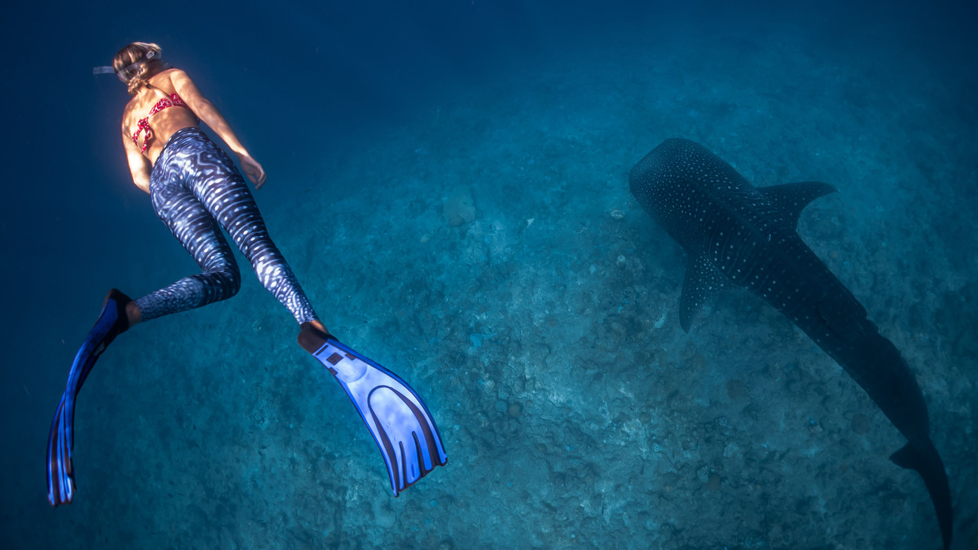 Gives Full Fin Power Cressi Fin Keepers Scuba Diving Fins Snorkeling No More Lost of Thrust for Freediving