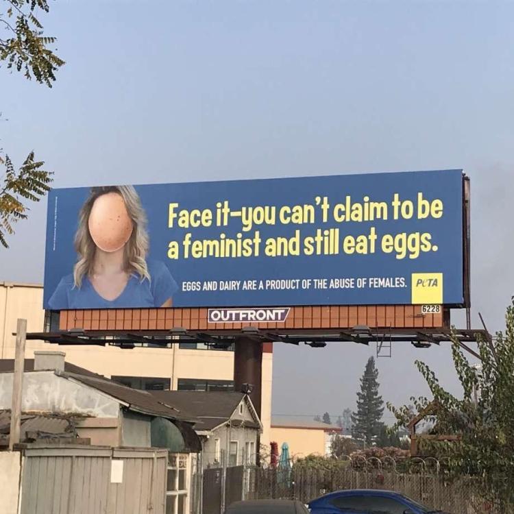 """""""Afronta que no puedes reclamar ser feminista y todavía comer huevos.  Los huevos y productos lácteos son abuso femenino. Peta"""""""