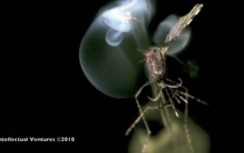 Aniquilando mosquitos con láser