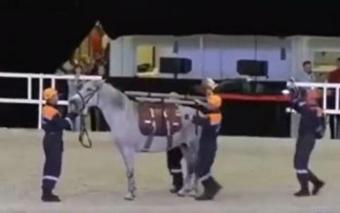 ¿Quién quiere ambulancias teniendo caballos?