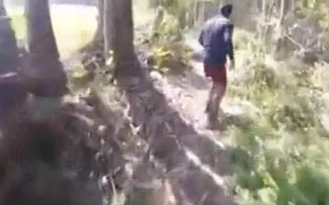 Ciclista se encuentra de frente con el Yeti Asturiano