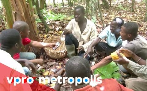 Recolectores de cacao prueban el chocolate por primera vez en su vida