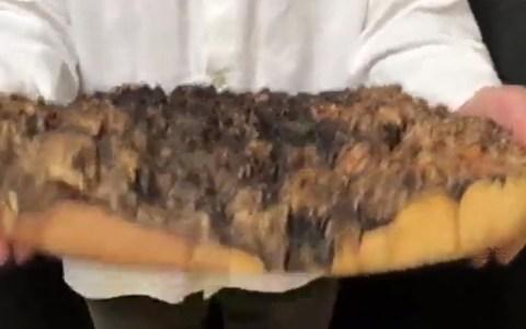Cuando tardan tanto en llevarte la pizza que las bacterias fecales que contiene ya están en la edad de bronce