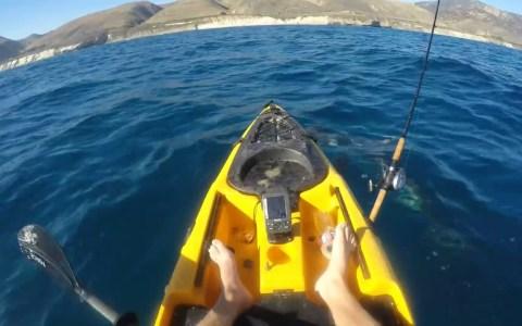 """""""Por qué no voy a volver a pescar en kayak nunca más"""""""