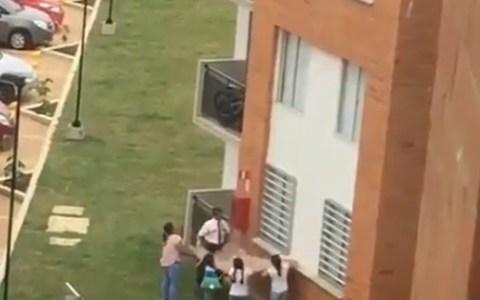 Intentando salvar a un perro que paseaba por el exterior de las ventanas