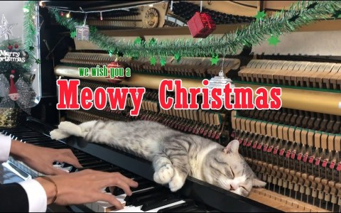 Meowy Ghristmas