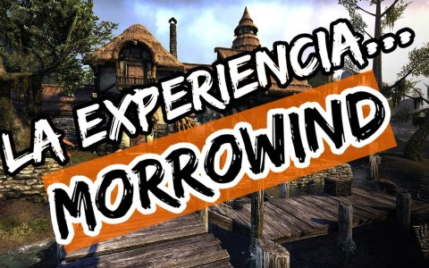 ¿En qué mundo de videojuego te gustaría vivir? -> MORROWIND
