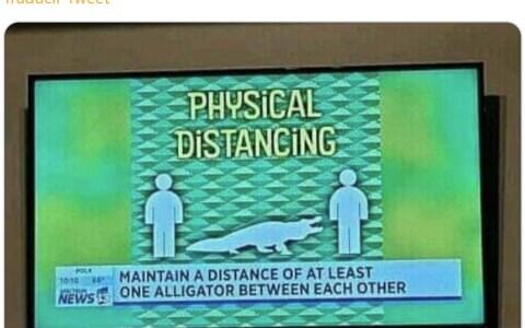 """""""Mantenga una distancia de al menos un aligátor"""""""