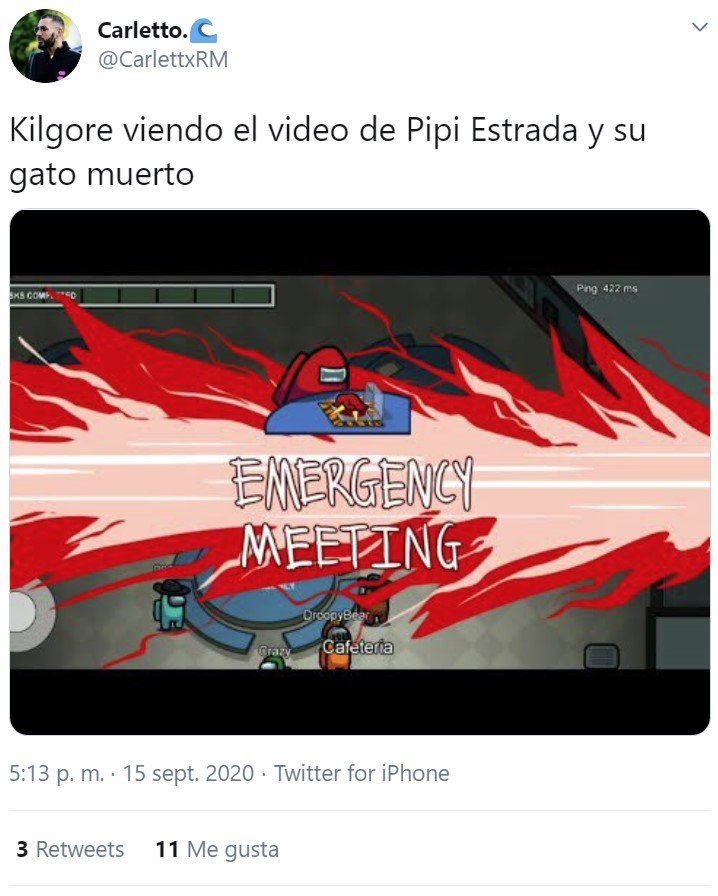 El gato de Pipi Estrada ha muerto