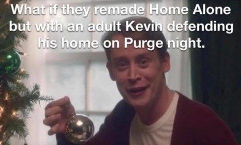 ¿Y qué tal si hicieran un remake de Solo en Casa pero con Kevin de adulto defendiendo su casa una noche de La Purga?