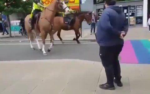 No debimos comprarle los caballos a Bertín Osborne...