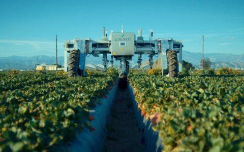 Años 90. Eres un crío. Ves Terminator en el cine y decides que dedicarás tu vida a la robótica.