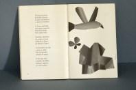 Bolboretas no papel