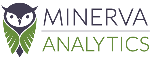 Minerva Analytics