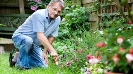 Самые выгодные кредиты для пенсионеров от Совкомбанка: «Пенсионный плюс»