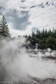 steaming waters