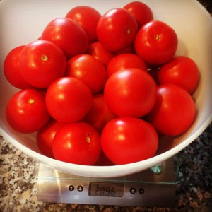 balcony tomato harvest