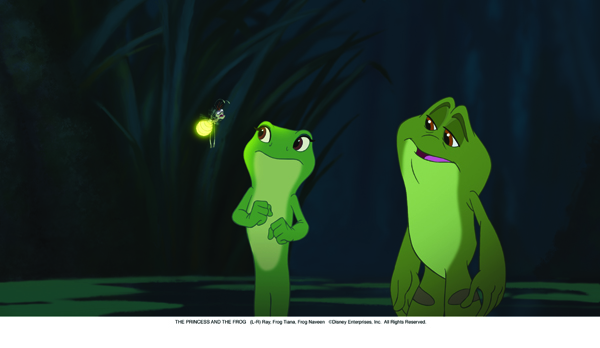 The Frog and the Frog