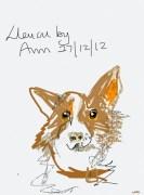 Lleucu by Ann Johnson