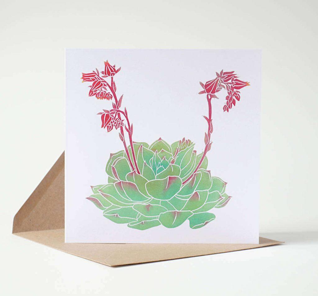 Echeveria elegans Greeting Card by Fiona Parrott