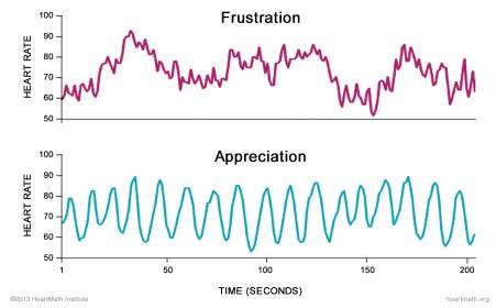la chimica della felicità e la coerenza cardiaca
