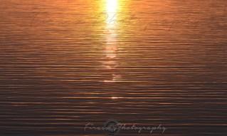 Daybreak2