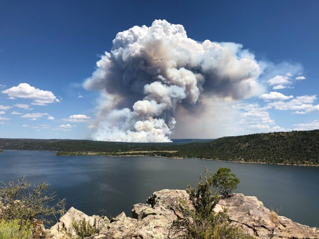 The Boggy Draw Unit 35 Prescribed Fire put up an impressive smoke column on June 9th, 2019. On the edge of that fire were community members on a tour to see how the Forest Service was successfully implementing this Summer burn. Tours like these give a different perspective to community members than those just getting view across the lake. Photo courtesy of San Juan National Forest.